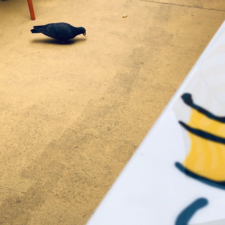 ハトさん食べてる (@ スヌーピー・バックロット・カフェ in 大阪市, 大阪府) https://t.co/gyzNg3dJxf https://t.co/dFX7heBjsf