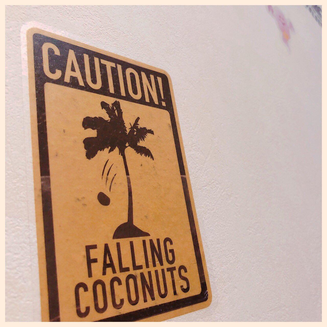 Falling coconuts https://t.co/DMwJcox5Cp