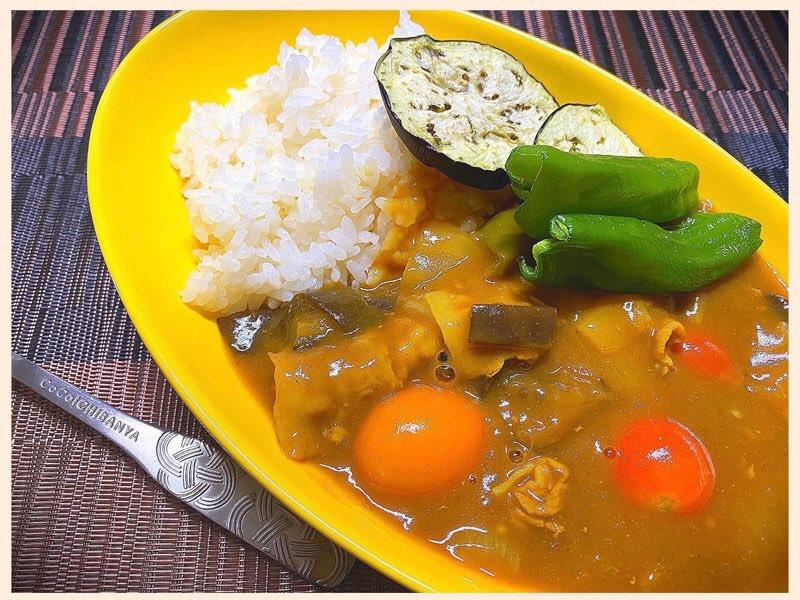 夏野菜カレー (゚д゚)ウマー 🍛🍆🍅近所の畑で採れたナスとピーマンと、ウチの庭で採れたミニトマト。 https://t.co/c009vI7E3c