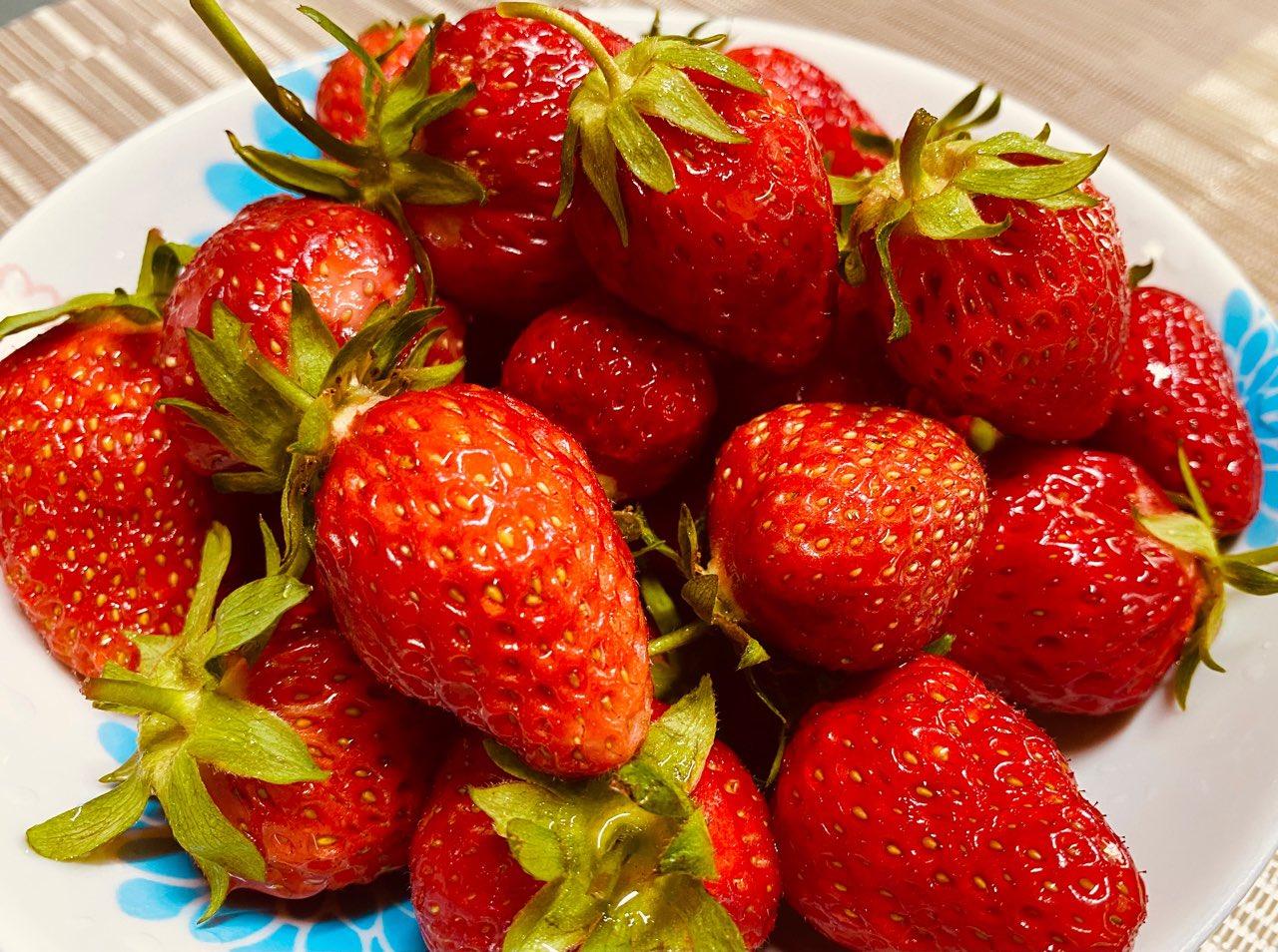 近所の畑で採れたいちごをいただいたので洗って食べる。甘さと酸味が良い感じ。 https://t.co/vefQNlXzHa