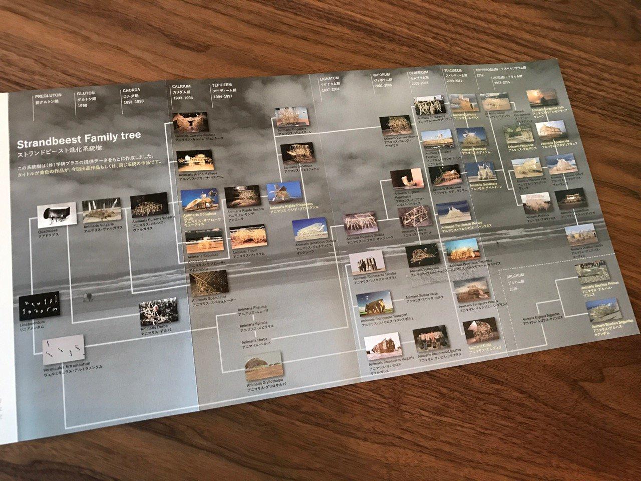 Strandbeest Family tree ストランドビースト進化系統樹 https://t.co/ArIQ0jnttf