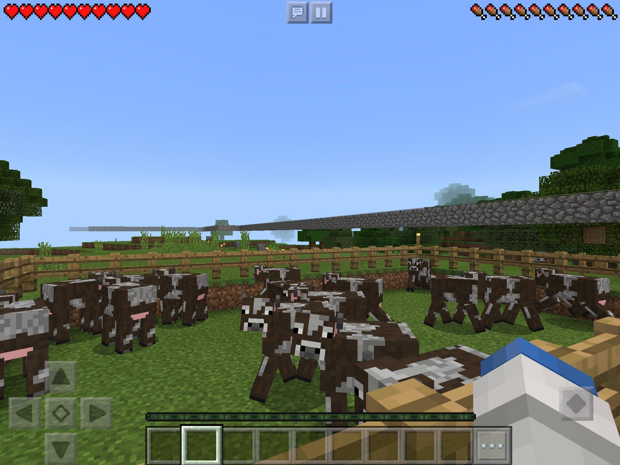 ウチの子が Minecraft で焼肉パーリピーポーのために集めた牛たち。これからみんな焼かれるのにつぶらな瞳でこっちを見てる(`;ω;´) https://t.co/tpKnLFf2xA